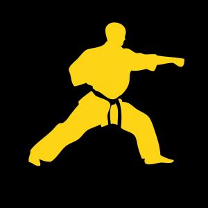 Kung-Fu icon