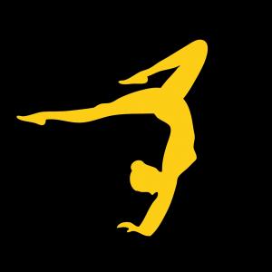 Turnen icon2